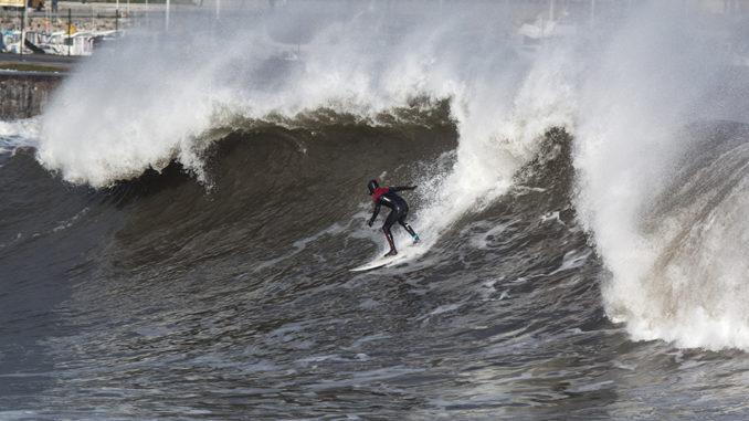 SURFER: PIPA